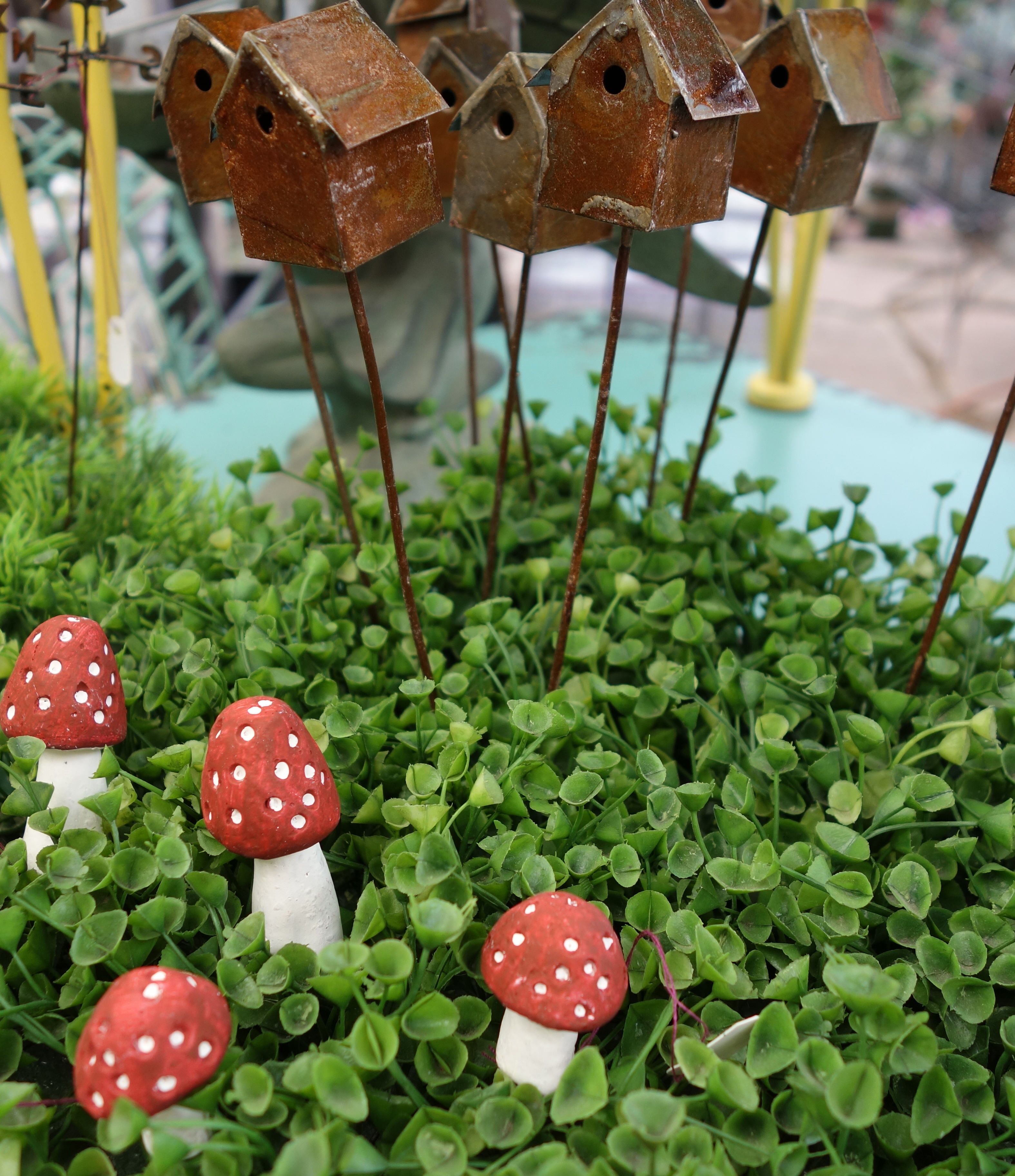 Sturtz And Copeland Fairy Gardens In Boulder Colorado